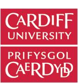 Cardiff University - Computer Science & Informatics