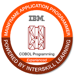 IBM z Enterprise Computing Kickstart - Small product image