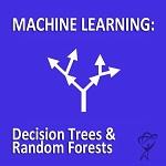 Total Training Decision Trees & Random Forests - Kleine Produktabbildung