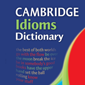 Cambridge Idioms Dictionary - Small product image